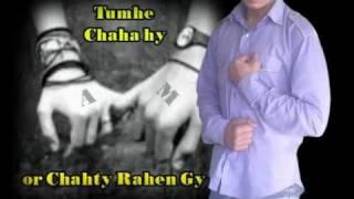 asi Ishq Da dard jaga baithey-Sheesha-instrumental song
