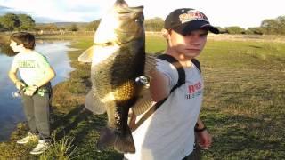 pesca black bass y lucio