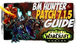 BM HUNTER 7.1.5 PVP GUIDE! WoW Legion patch 7.1.5