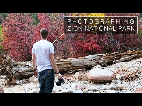 Landscape Photography in Zion | My First Visit