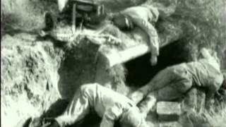 первый день войны-немцы  в  шоке.mp4