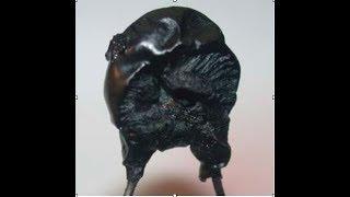 Reakční reakce na reakci - V Kitinkovi bouchnul varistor!