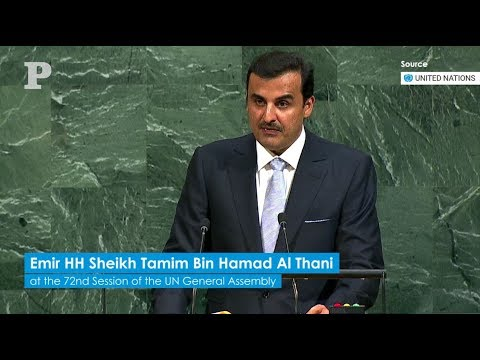 Emir's UN speech in full