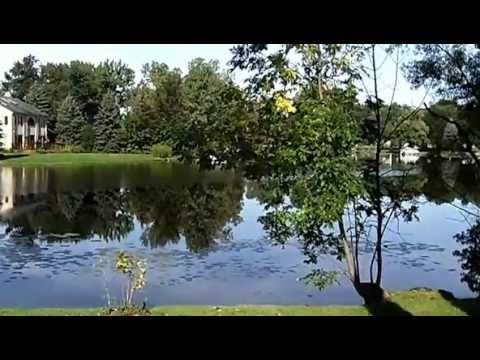 Lake Neva Oakland County MI