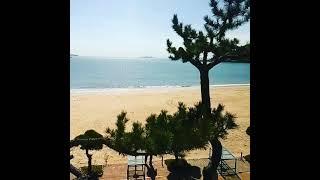 태안 연포해수욕장(Yeonpo beach in Taea…