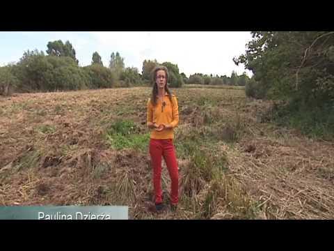 Landscape for biodiversity
