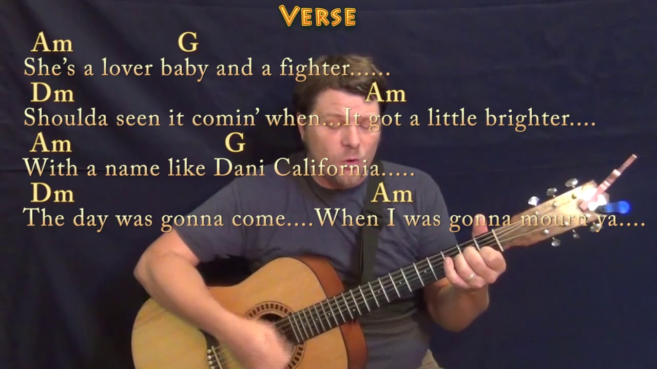 Dani California RHCP Guitar Cover Lesson with Chords/Lyrics   Munson
