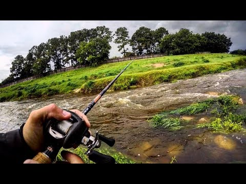 Fishing A FLOODED CREEK For FAST CURRENT BASS!
