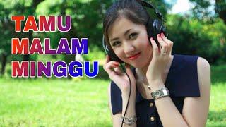 DJ TAMU MALAM MINGGU / DANGDUT REMIX