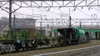 EF210-125 JR貨物電気機関車 桃太郎 配給貨物列車牽引 ECO-POWER