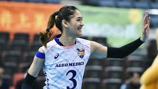 Top 10 Kill Blocks by Jaja Santiago   JAPAN Volleyball League