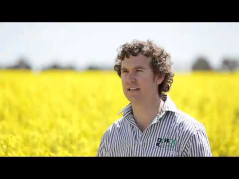 Roundup Ready canola grower - Ed Nixon, Henty NSW