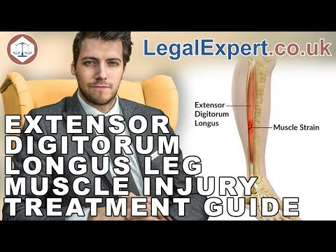 Extensor Digitorum Longus Leg Muscle Injury Treatment Guide ( 2019 ) UK