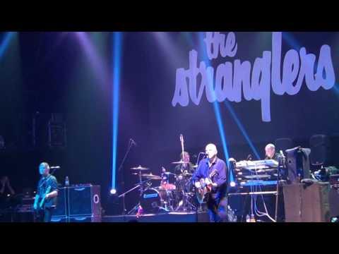 THE STRANGLERS - MIDNIGHT SUMMER DREAM - PIREAUS 117 ACADEMY - 20.11.2016!