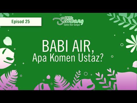 Ep. 25 : Babi Air, apa komen ustaz?
