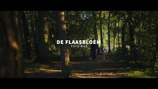 RCN de Flaasbloem **** - Le camping en Brabant (Chaam)