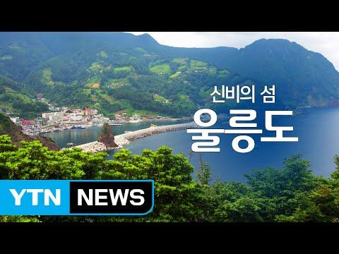 신비의 섬 '울릉도' / YTN