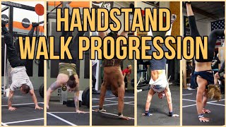 Handstand Walk Progression - CynGym