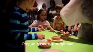 видео 7 интерактивных музеев Москвы