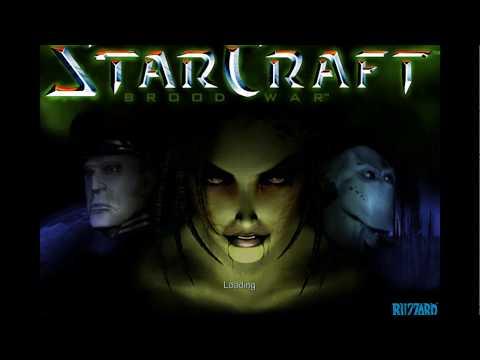스타크래프트 1.19 퍼블릭 테스트