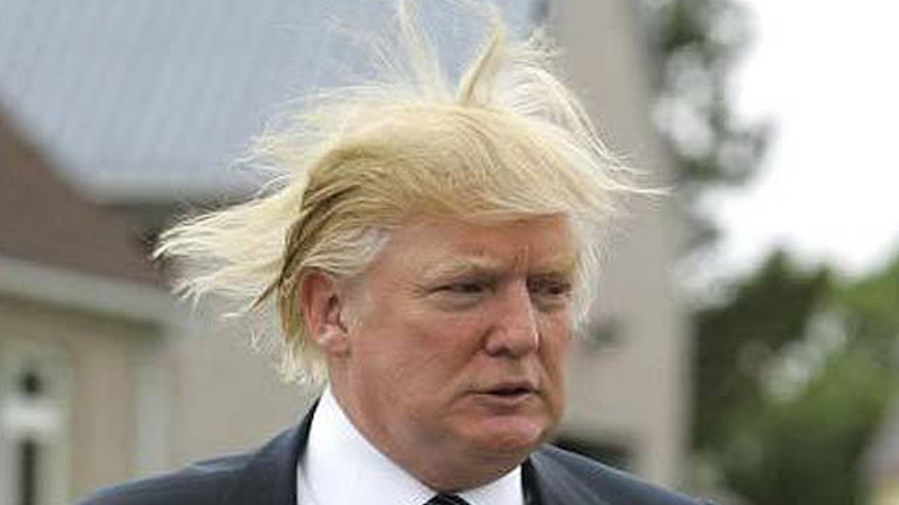 Image result for Trump's hair you tube