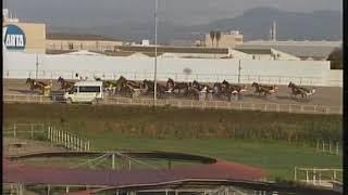 Vidéo de la course PMU PREMI SUZUKA