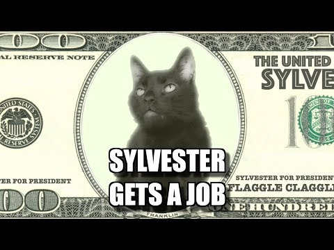Talking Kitty Cat #67.5 - Sylvester Gets A Job