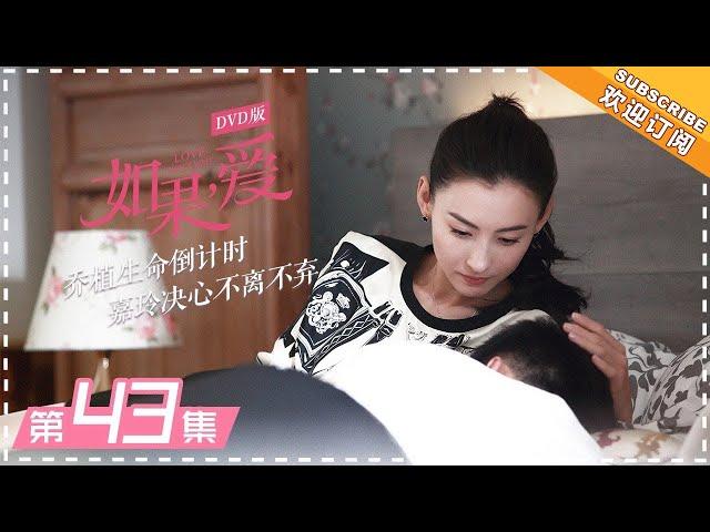 DVD版 |《如果,爱》第43集: 宋乔植生命进入倒计时 Love Won't Wait EP43【芒果TV独播剧场】