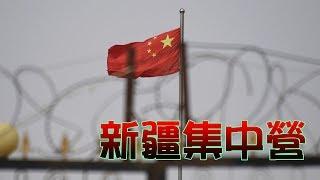 新疆集中營,真相到底是什麼?!