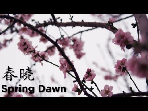 Spring Dawn Classical Poem  Learn Chinese Now