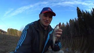 Рыбалка весной 2021. Ловля на ФИДЕР/ПИКЕР на малой речке