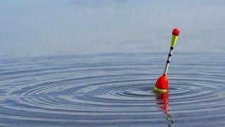 Обзор поплавков на 5 грамм