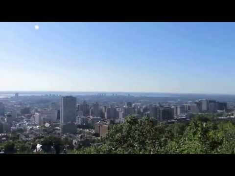 Montreal View from Mount Royal