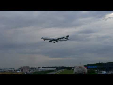 "Airbus A340-300 Lufthansa ""Star Alieance""  Landing in Frankfurt"
