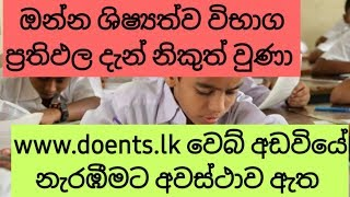 Scholarship exam results release