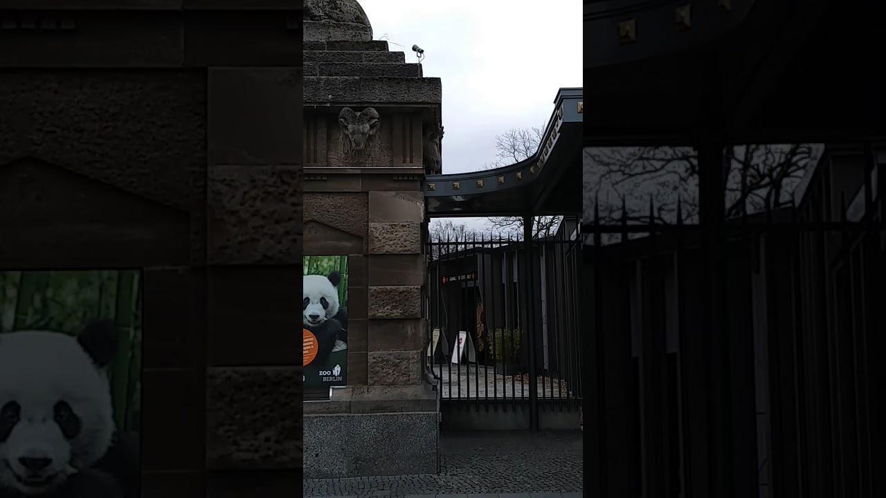 Zoo Berlin Und Bahnhof Zoo Berlin 26 11 2017 Youtube