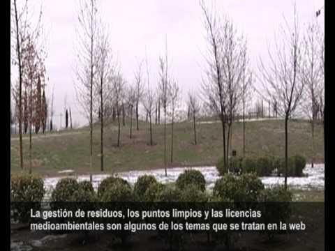13-01-10 Línea Verde San Fernando