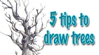 5 tips to draw trees effectively