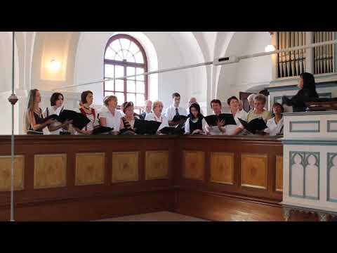 2012 - Zselyki Falunap - Besztercei Vegyeskórus