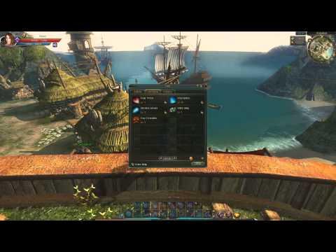 C9 Kaary (warden) Mixed Pve-Pvp Skill Build