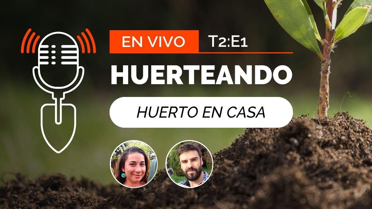 HUERTO URBANO EN CASA | Taller Huerto Online 🔴 Huerteando Podcast