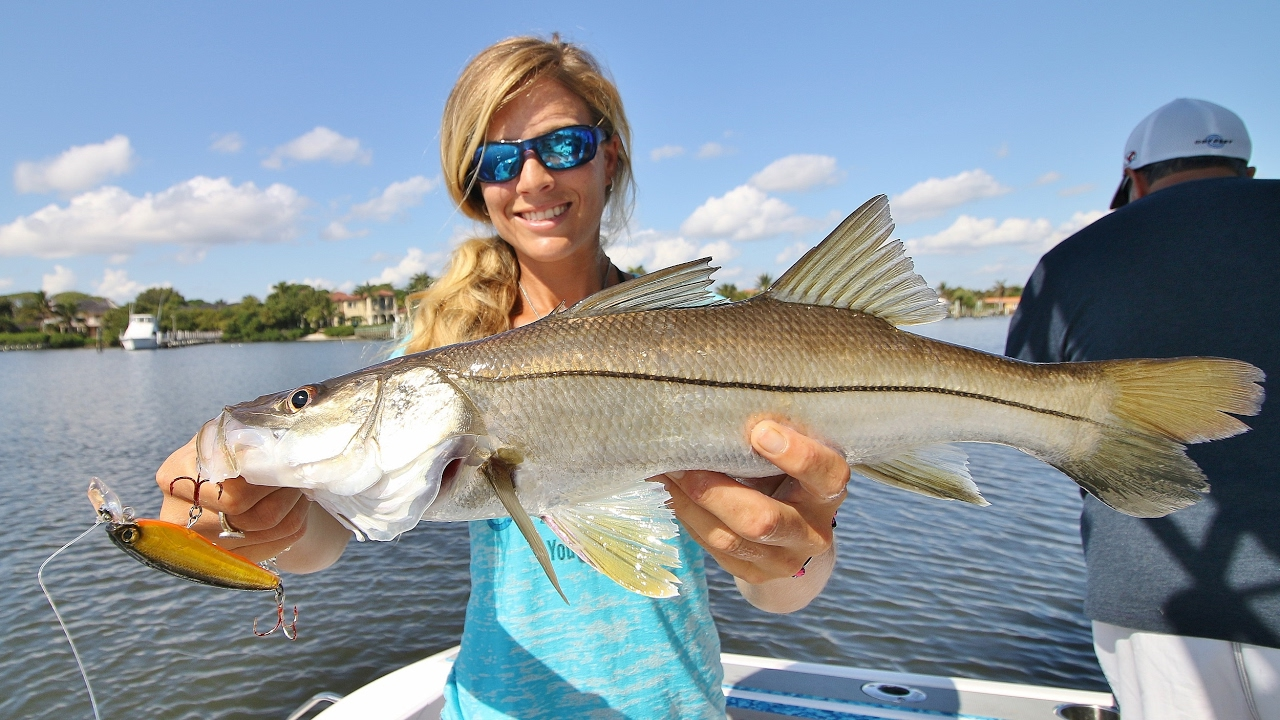 Florida inshore saltwater trolling for snook fishing video for Fishing for snook