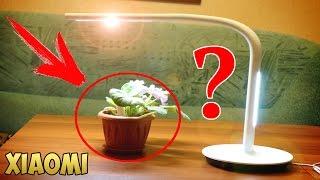 ЧТО ОПЯТЬ ПРИДУМАЛИ В XIAOMI??? FLOWERS TESTER LIGHT MONITOR. GEARBEST