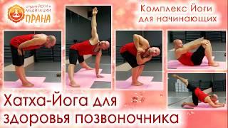 Хатха-йога для здоровья позвоночника, Йога для спины, Йога для позвоночника, начинающий йога