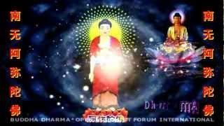 _/((♥))\_ AMITABHA BUDDHA PRAYER _/((♥))\_  阿弥陀佛祷告