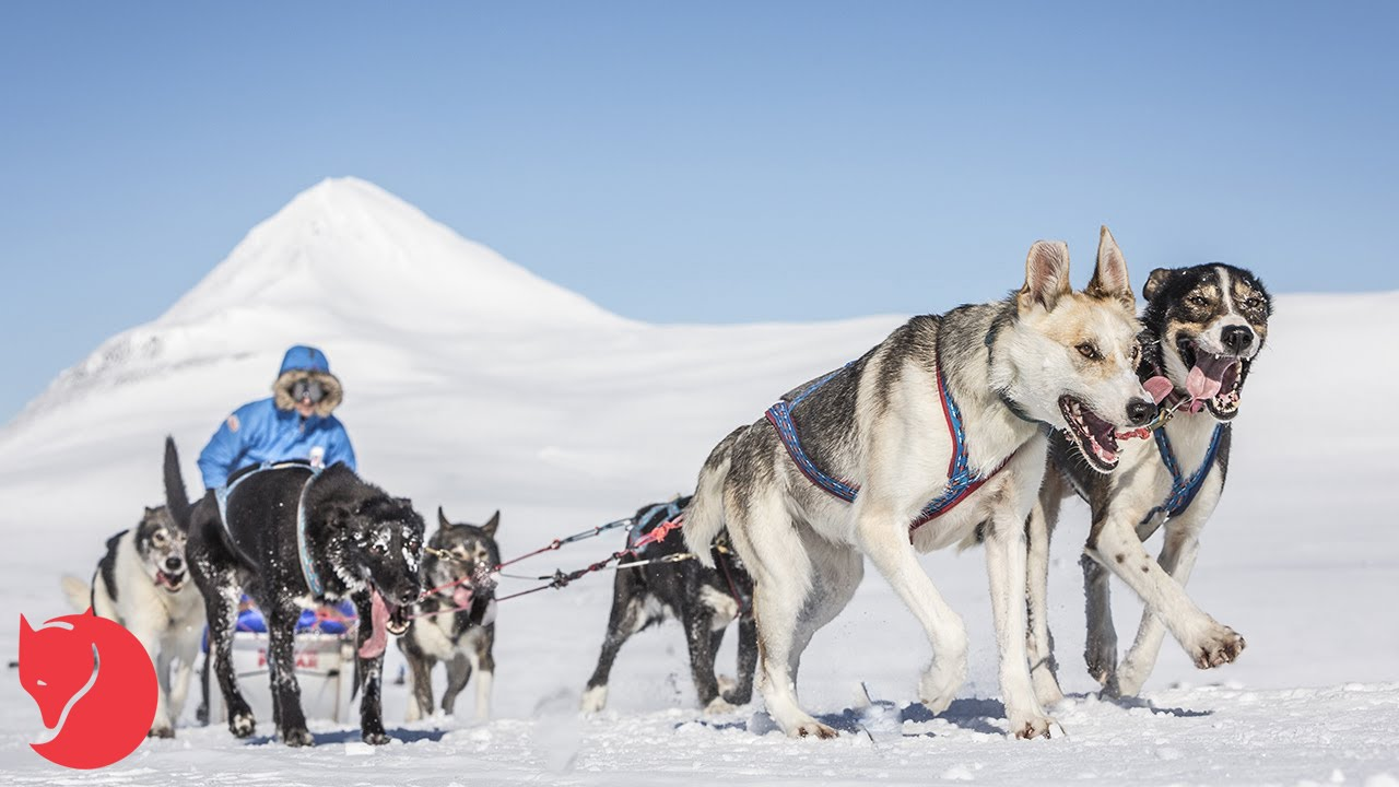 How to get the most out of your Fjällräven Polar application