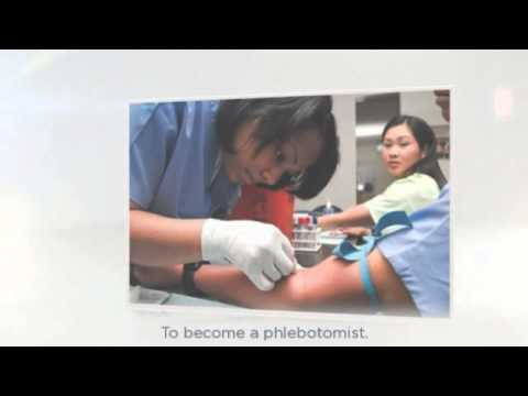 how to become a phlebotomist with phlebotomist training - youtube, Human Body