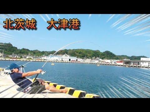 港 釣り 大津