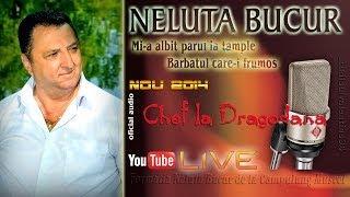 Download lagu NELUTA BUCUR . Mi-a albit parul la tample - Barbatul care-i frumos (live 2014)