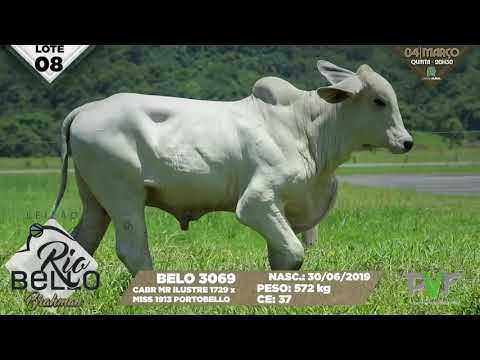 LOTE 08   BELO 3069